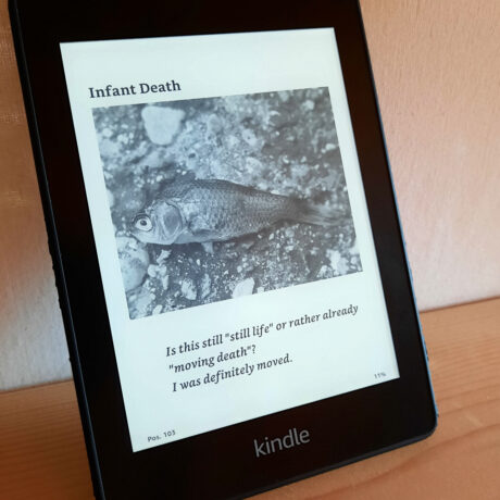 kindle look inside deadfish