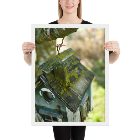 Likin' Lichen Bird House – Framed poster 18×24 inch