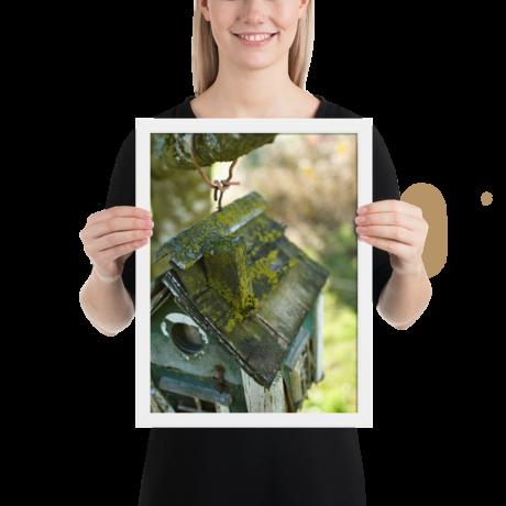 Likin' Lichen Bird House – Framed poster 12×16 inch
